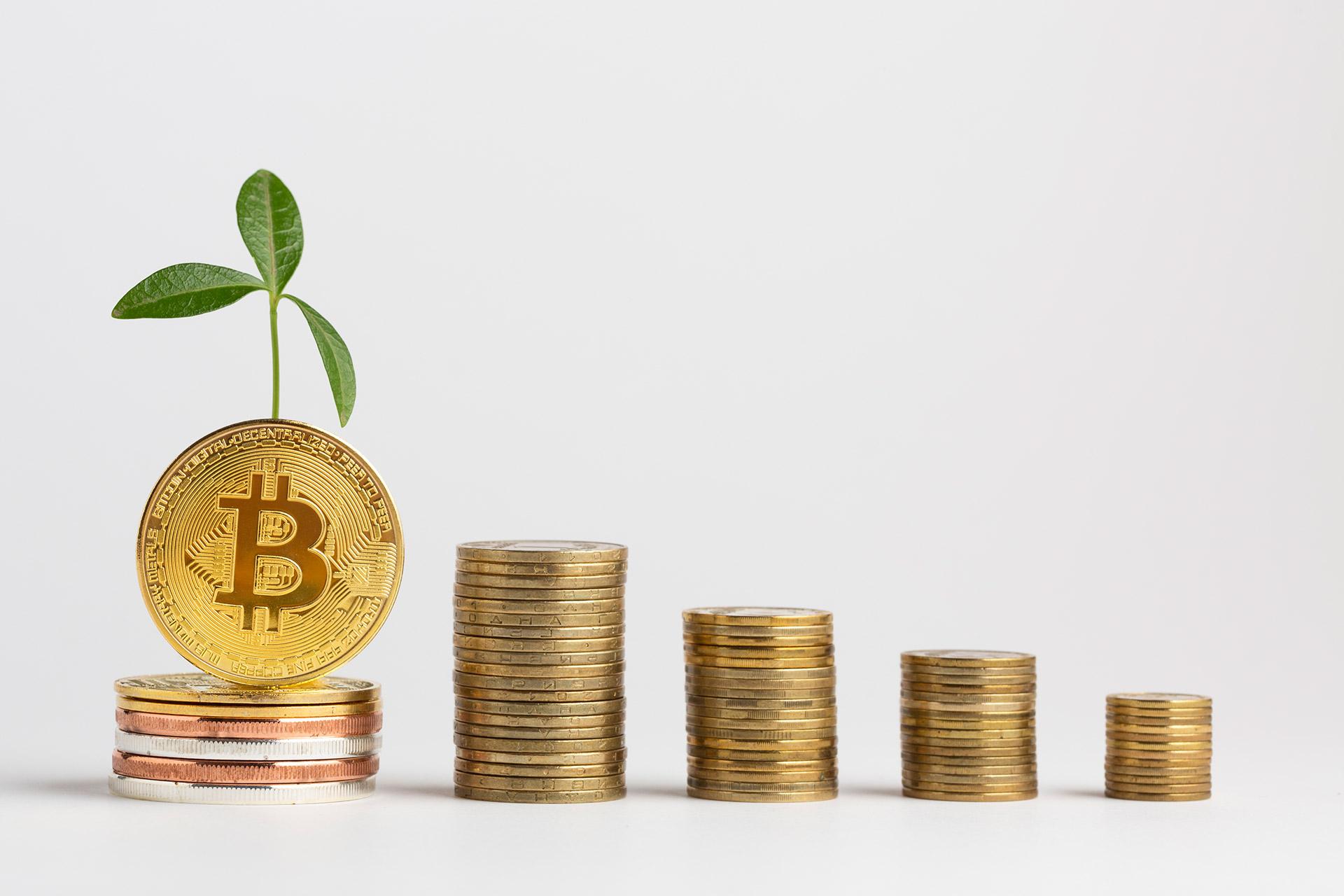 Bitcoinové poradenstvo